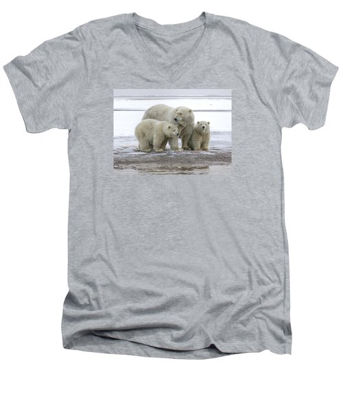 Mother And Cubs In The Arctic Men's V-Neck T-Shirt