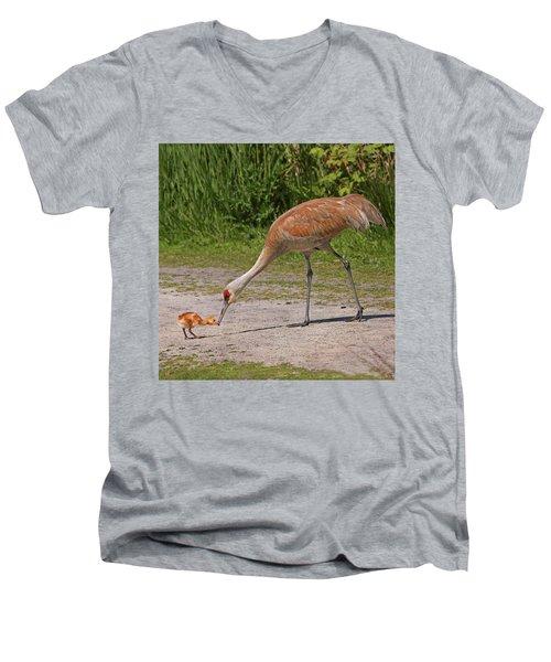 Mother Sandhill Crane Feeding Baby Men's V-Neck T-Shirt