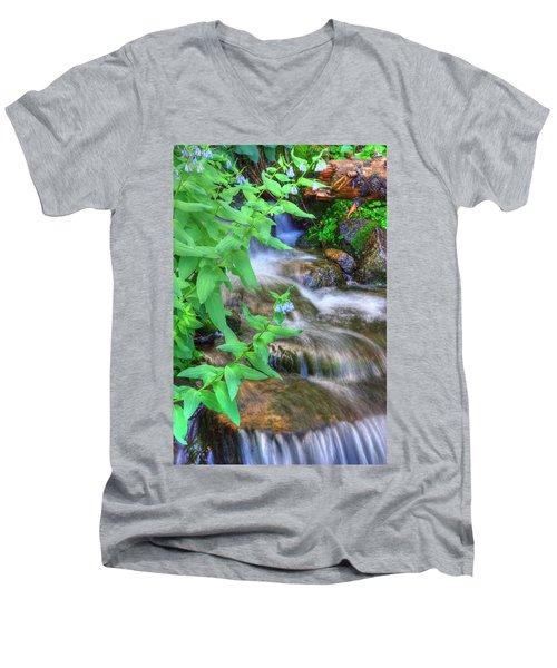 Mountain Bluebells Men's V-Neck T-Shirt by Utah Images