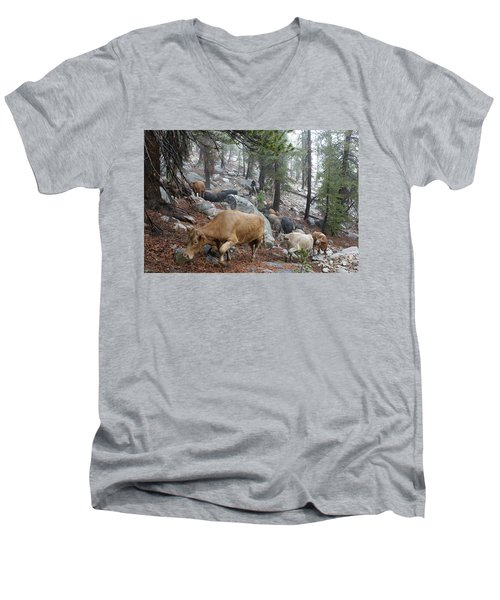 Mountain Climbing Men's V-Neck T-Shirt