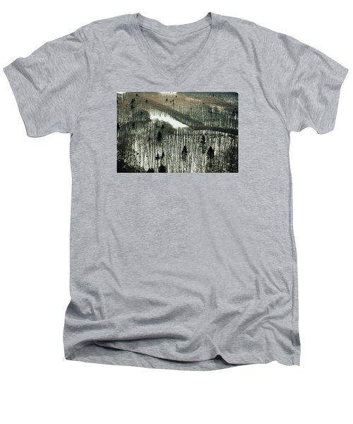 Mountain Forest Men's V-Neck T-Shirt