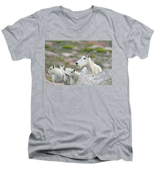 Men's V-Neck T-Shirt featuring the photograph Mountain Goat Family by Scott Mahon