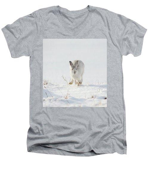 Mountain Hare Approaching Men's V-Neck T-Shirt
