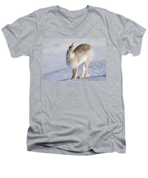 Mountain Hare In The Snow - Lepus Timidus  #2 Men's V-Neck T-Shirt