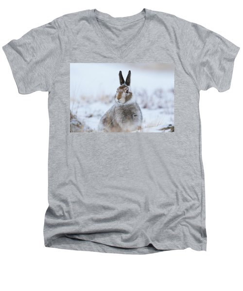 Mountain Hare - Scotland Men's V-Neck T-Shirt