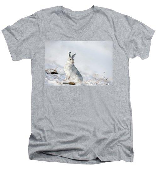 Mountain Hare Sitting In Snow Men's V-Neck T-Shirt