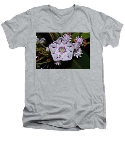 Mountain Laurel 005 Men's V-Neck T-Shirt