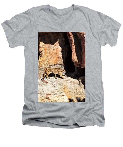 Mountain Lion Men's V-Neck T-Shirt by Lawrence Burry