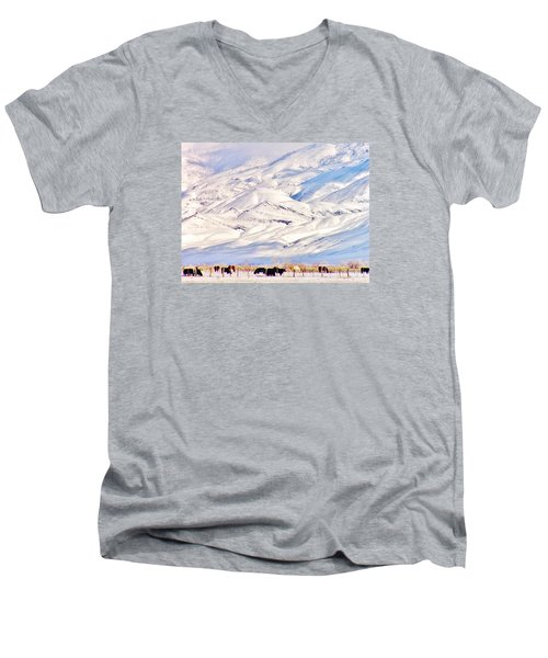Mountain Snow Men's V-Neck T-Shirt