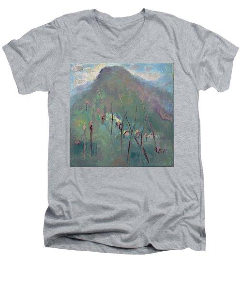 Mountain Visit Men's V-Neck T-Shirt