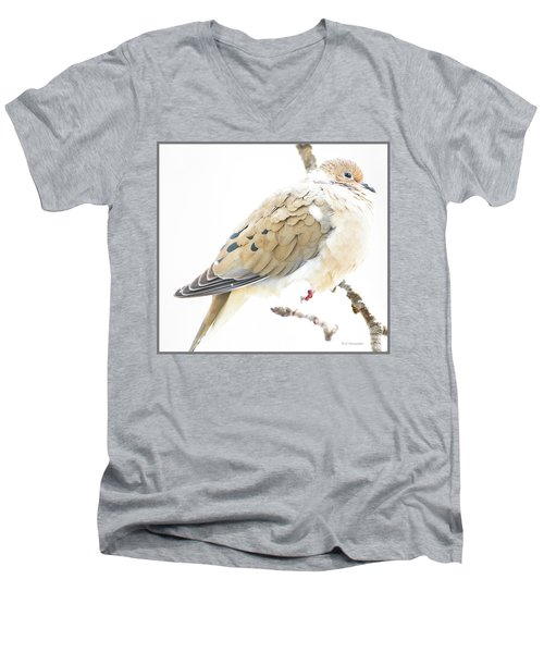 Mourning Dove, Snowy Morning Men's V-Neck T-Shirt by A Gurmankin