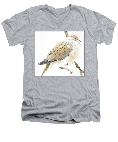 Mourning Dove, Snowy Morning Men's V-Neck T-Shirt