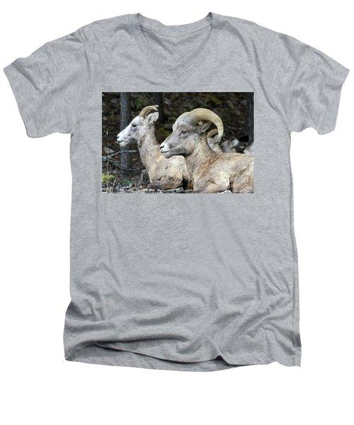Mt Sheep  Men's V-Neck T-Shirt
