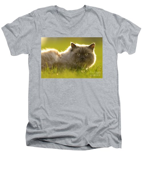 Mufasa Men's V-Neck T-Shirt