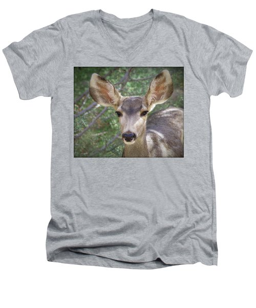 Mule Deer Men's V-Neck T-Shirt