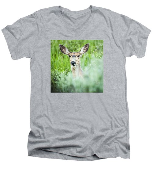 Men's V-Neck T-Shirt featuring the photograph Muley Mule Deer by Daniel Hebard