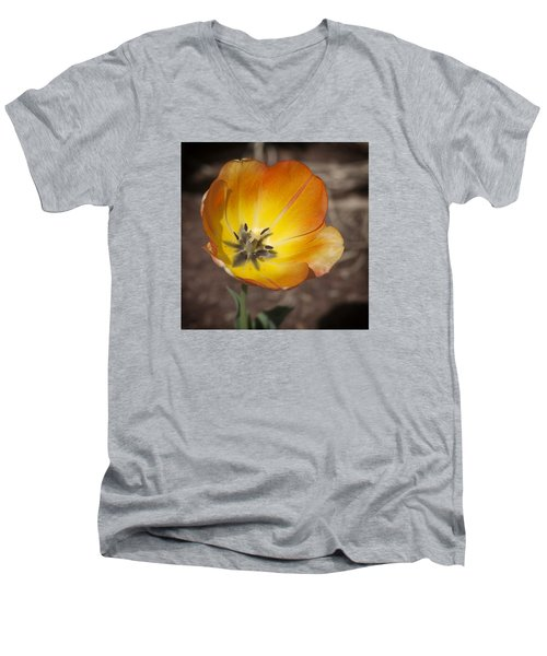 Multihued Men's V-Neck T-Shirt by Morris  McClung
