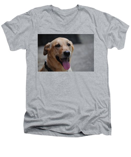 My Dog Ubu Men's V-Neck T-Shirt