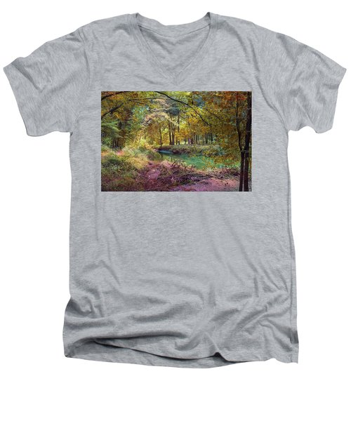 My World Of Color Men's V-Neck T-Shirt
