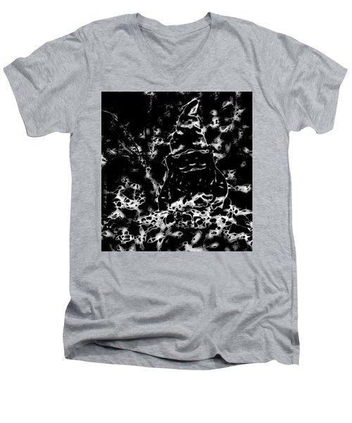 Mystic Garden Gnome Men's V-Neck T-Shirt