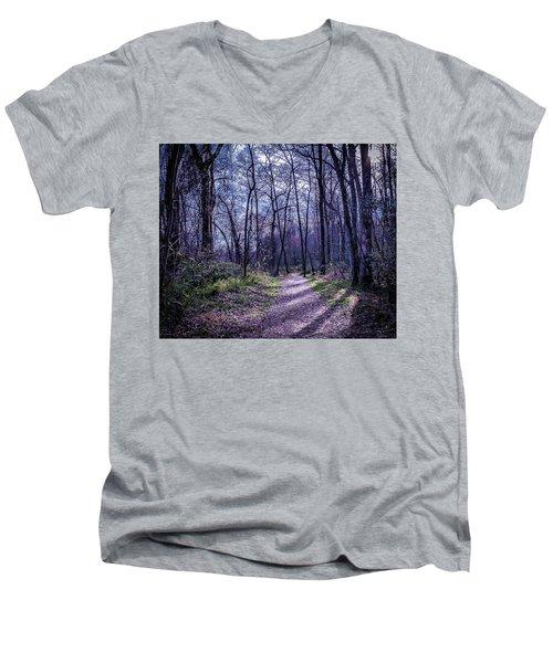 Mystical Trail Men's V-Neck T-Shirt