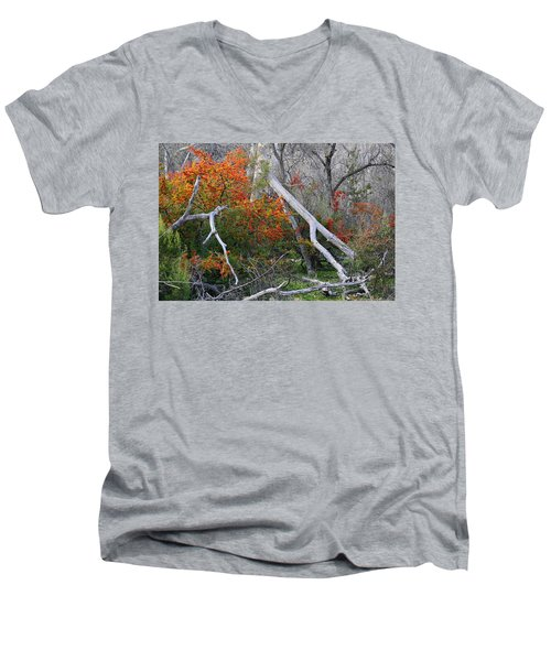 Mystical Woodland Men's V-Neck T-Shirt