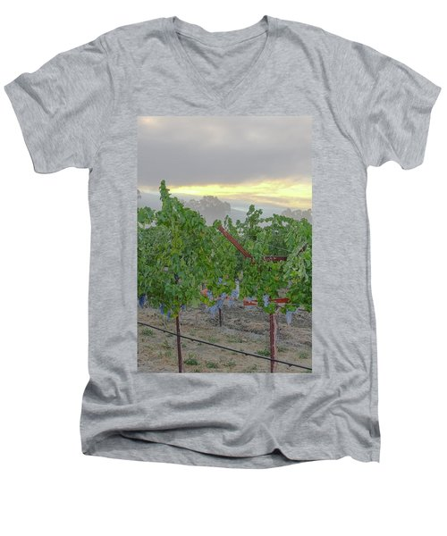 Napa Valley At Dawn Men's V-Neck T-Shirt