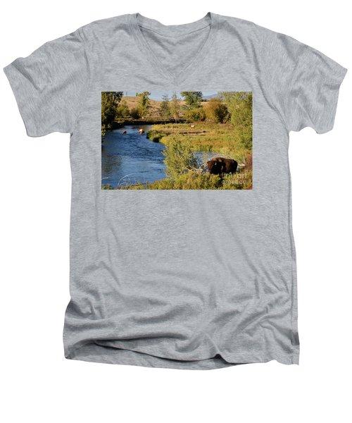 National Bison Range Men's V-Neck T-Shirt by Cindy Murphy - NightVisions