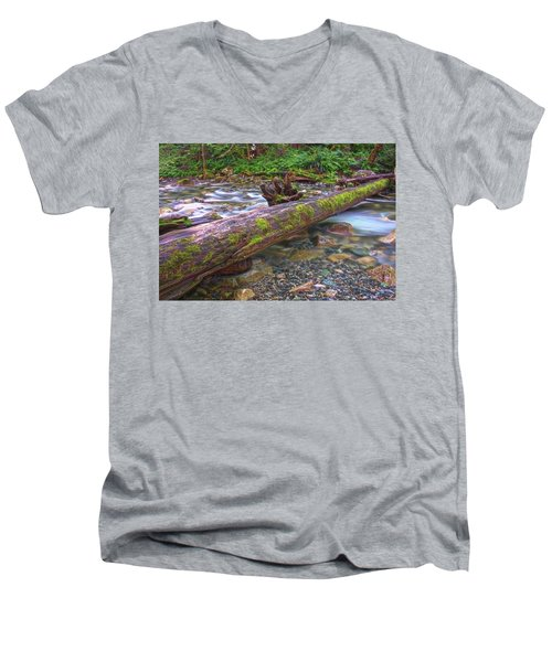 Natural Bridge Men's V-Neck T-Shirt