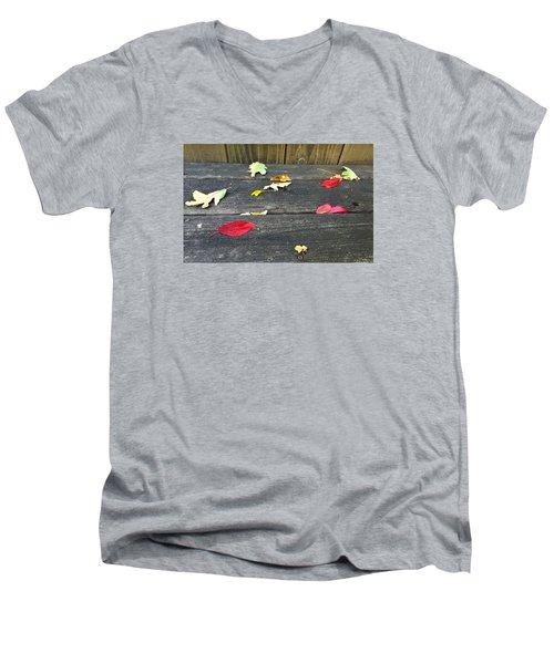 Natural Fall Men's V-Neck T-Shirt