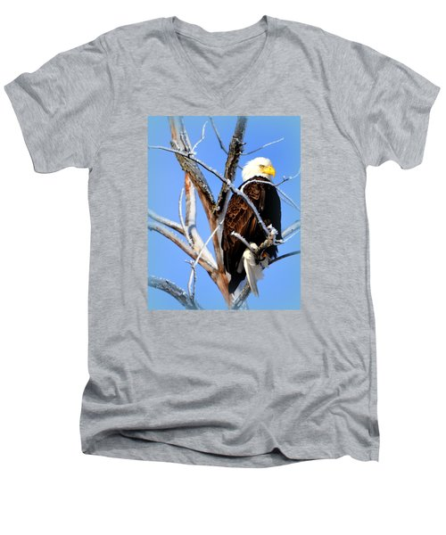 Natural Freedom Men's V-Neck T-Shirt