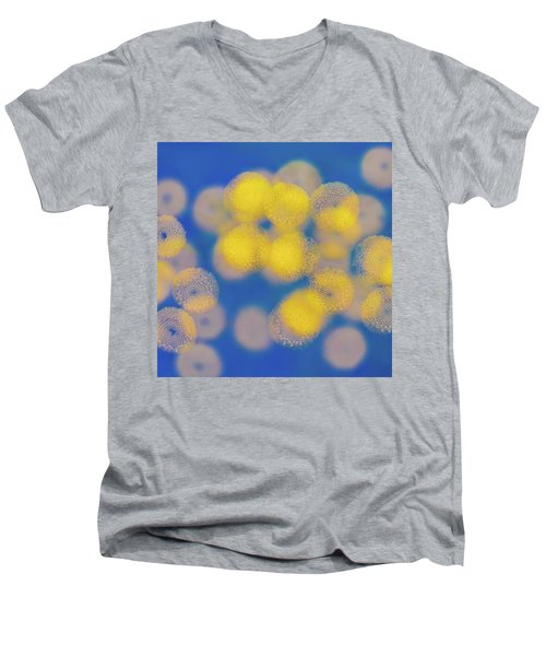 Men's V-Neck T-Shirt featuring the photograph Natural Lights by Ari Salmela