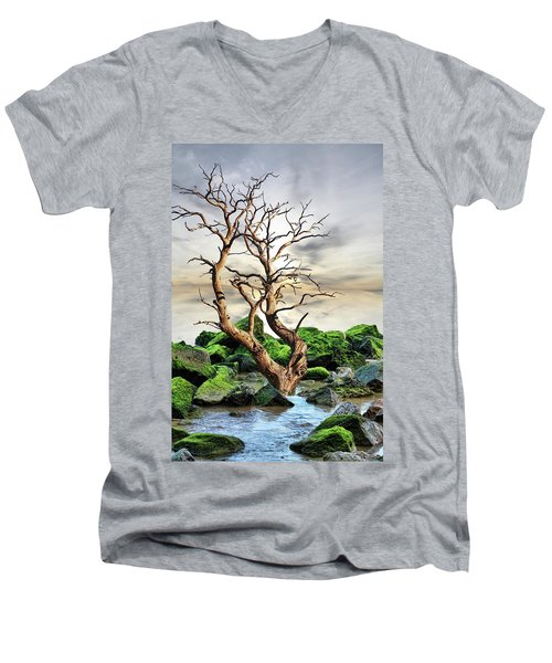 Natural Surroundings Men's V-Neck T-Shirt