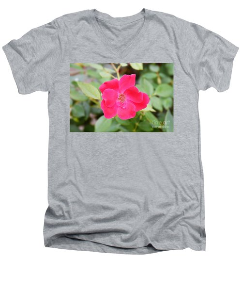 Men's V-Neck T-Shirt featuring the photograph Nature - Colorful Flower Gifts  by Ray Shrewsberry