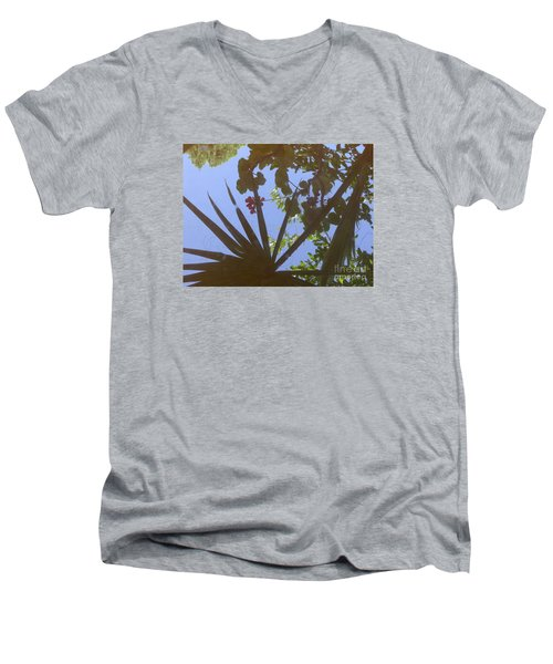 Nature Reflected Men's V-Neck T-Shirt by Nora Boghossian