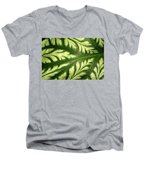 Nature's Design Men's V-Neck T-Shirt by Mariarosa Rockefeller