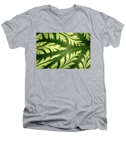 Nature's Design Men's V-Neck T-Shirt