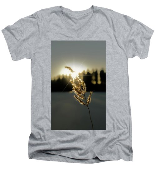 Nature's Stars Men's V-Neck T-Shirt
