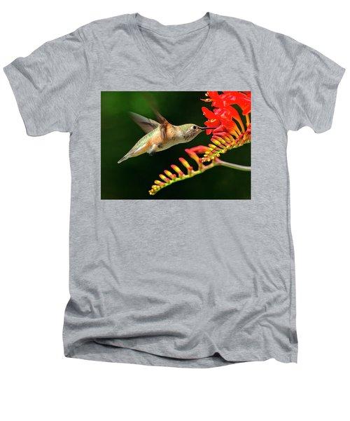 Nectar Time Men's V-Neck T-Shirt by Sheldon Bilsker