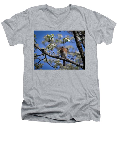 Men's V-Neck T-Shirt featuring the photograph Nest Building by Douglas Stucky