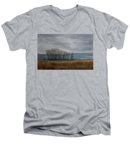 New Buffalo Marsh Men's V-Neck T-Shirt
