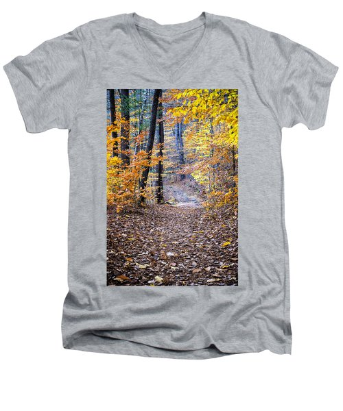 New Hampshire Woods Men's V-Neck T-Shirt