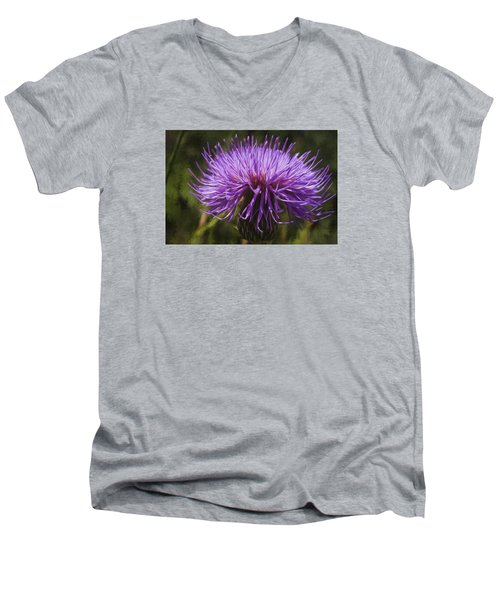 New Mexican Thistle Men's V-Neck T-Shirt