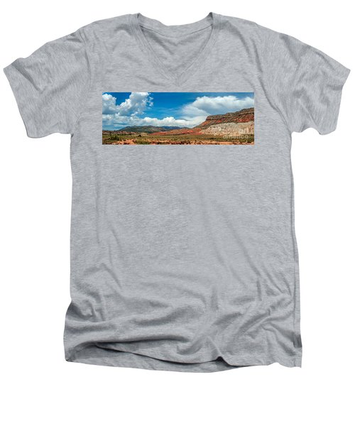 New Mexico Men's V-Neck T-Shirt by Gina Savage
