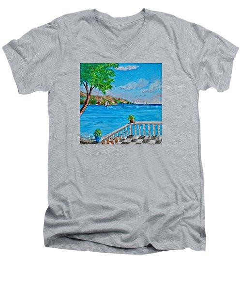 Nice View Men's V-Neck T-Shirt