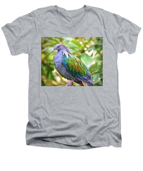 Nicobar Island Occupant Men's V-Neck T-Shirt