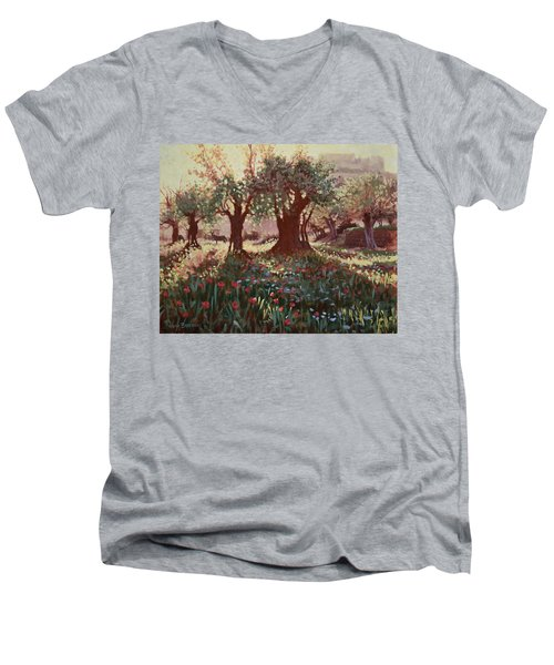 Nimrods Castle, Northern Galilee, Israel Men's V-Neck T-Shirt