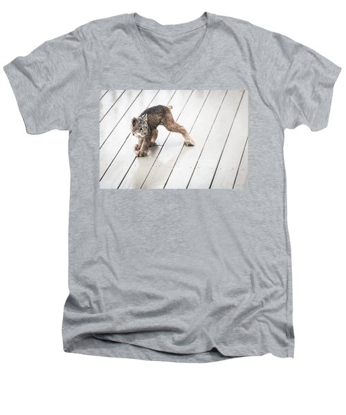 Ninja Lynx Kitty Men's V-Neck T-Shirt