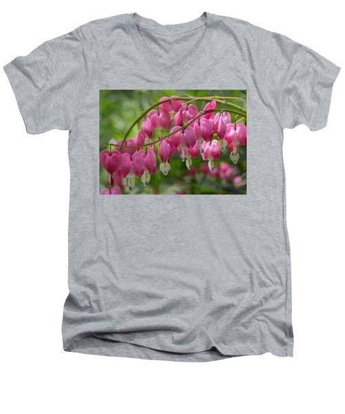 Bleeding Heart Men's V-Neck T-Shirt