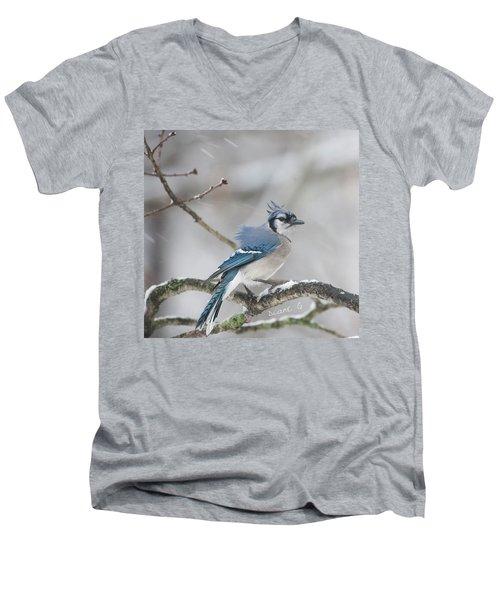 Nor' Easter Blue Jay Men's V-Neck T-Shirt